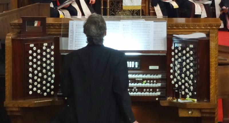 Organ view